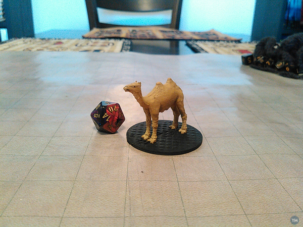 Camel for your Tabletop game!
