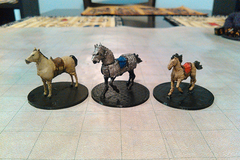 Draft Horse  War Horse And Riding Horse