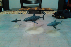 Giant Shark  Hunter Shark  And Reef Shark