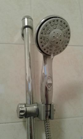 Shower holder
