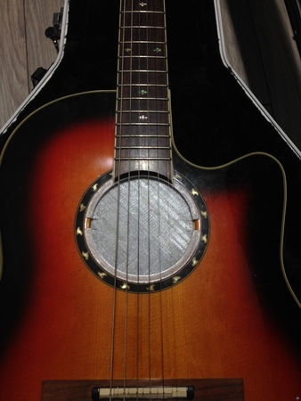 feedback buster for Ovation guitars
