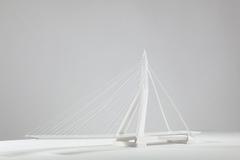 Erasmus Bridge Guide Bridgeshot