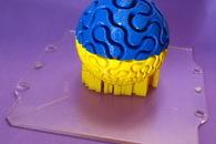 Carousel thumb fractal maze ball 2