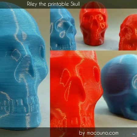 Riley the printable skull