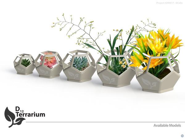 D12 Terrarium
