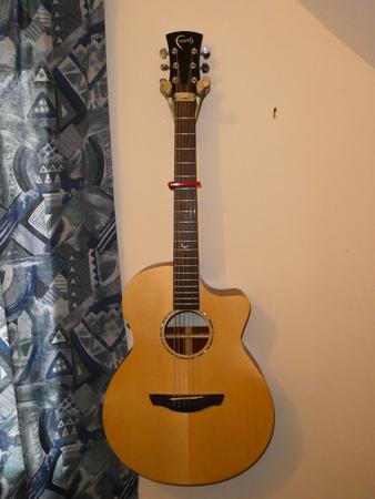 Acoustic Guitar Mount