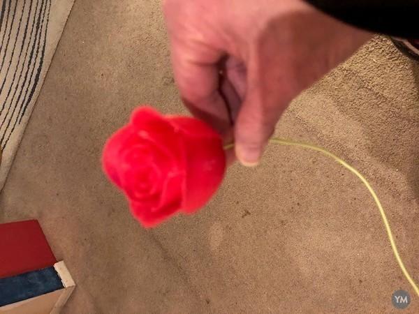 3D Anniversary Roses