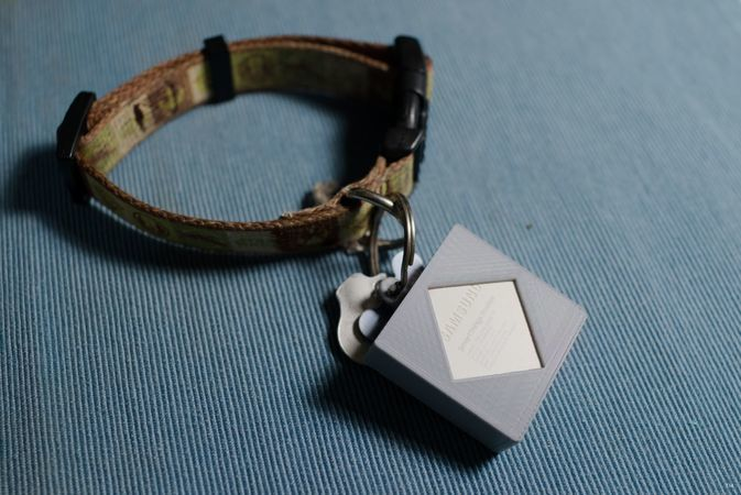 Samsung SmartThings GPS Tracker Dog Collar Keychain Mount
