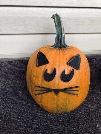 Mr. Pumpkin Head/Halloween Cat Pumpkin Face/Kids Halloween Craft