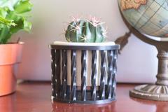 Spiral Planter2