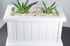 Rectangle Planter W Plant3