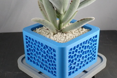 Voronoi Planter