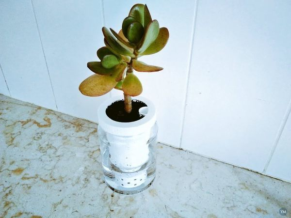 Yet another self watering vase planter