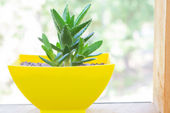 Yellow Planter2