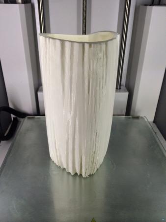 Organic Vase 1