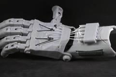 Raptor Hand
