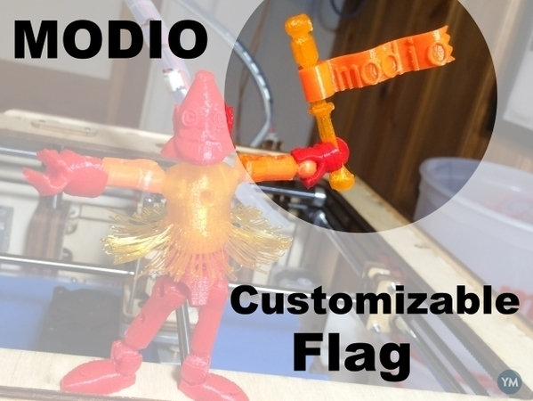 modio customizable flag
