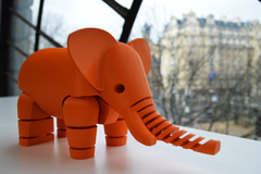 Elephantdebout