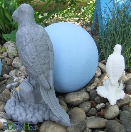 Parrot Floh