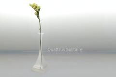 Quattrus Solitaire Main
