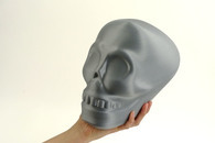Carousel thumb silver skull