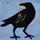 Mini raven 4 3 sm