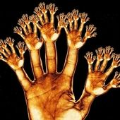 Span2 gold hands cropped