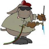 Span2 bvd avatar
